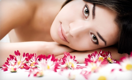 3 Microdermabrasion Treatments (a $300 value) - Galina's European Skincare and Day Spa in Newtonville