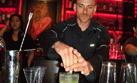 Introduction to Mixology  Course for 1 (a $199 value) - SF Mixology in San Francisco