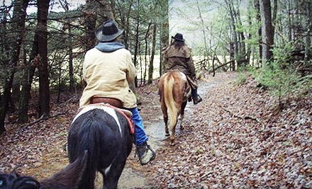 Five Oaks Riding Stables - Five Oaks Riding Stables in Sevierville