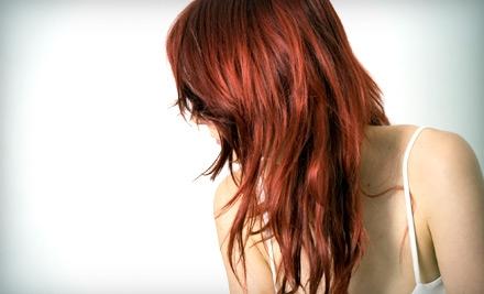 Trends Hair Salon - Trends Hair Salon in Noblesville
