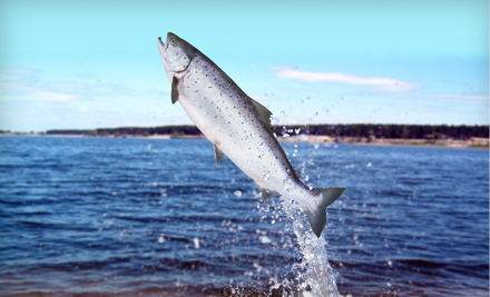 Puget sound sports fishing edmonds wa groupon for Puget sound fishing charters