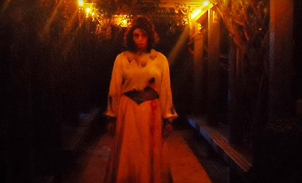 1 VIP Pass to The Curse of Sarah Winchester Maze (up to a $30 value) - Winchester Mystery House in San Jose