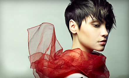 Haircut, Gloss Treatment & Express Botanical Hair-Therapy Treatment (up to a $115 value) - Remix Aveda Hair Co. in Hollywood