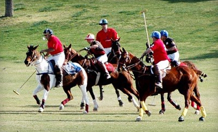 The Polo Party at Westworld of Scottsdale on Sat., Nov. 5 at 11:30AM: General Admission for 2 - The Polo Party in Scottsdale