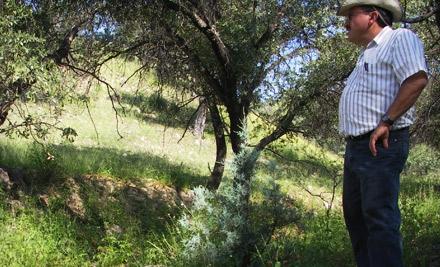 $20 Donation to the Sonoran Institute - Sonoran Institute in Tucson