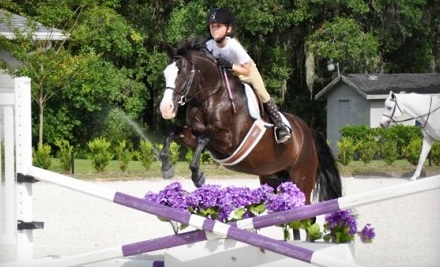 1-Hour Horse-Riding Lesson (a $60 value) - WestWood Farms LLC in Orlando