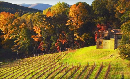 Deluxe Vineyard and Winery Tour w/ Tasting for 2 (a $90 value) - Montaluce Winery and Le Vigne Ristorante in Dahlonega