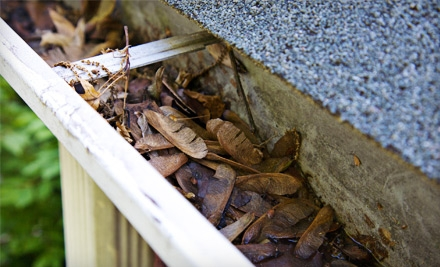 Gutter Cleaning For a House of Up to 2,000 Sq. Ft. With Professional Roof Inspection (a $300 value) - EcoRoof Care & Repair in