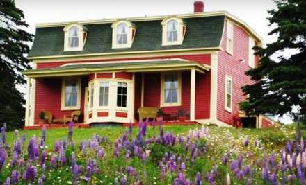 1-Night Package for Two (a $174 value) - George House Heritage Bed and Breakfast in Dildo