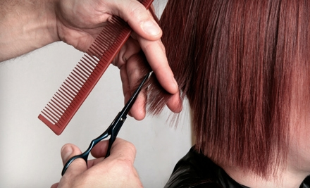 Haircut, Blow-dry, and Style Plus Base Color - C the Salon in Studio City