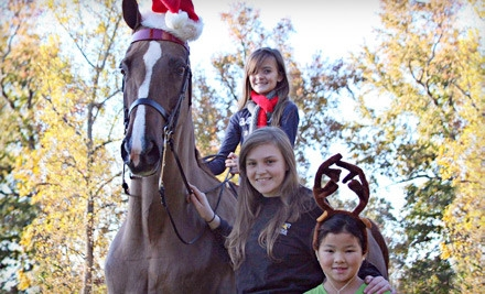Two 30-Minute Private Horseback-Riding Lessons (a $70 value) - Fairhope Stables in Duluth