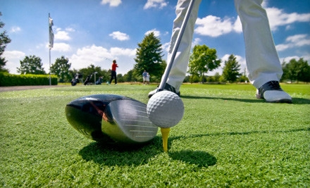 1-Hour Video Swing-Analysis Session (a $100 value) - CityGolf Boston in Walpole