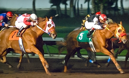 Race-Day Outing for 2 (an $81 value) - Los Alamitos Race Course in Los Alamitos