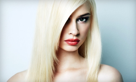 Wash, Cut, Blowout Style, and a Conditioning Treatment - Special Effects Salon in Lebanon