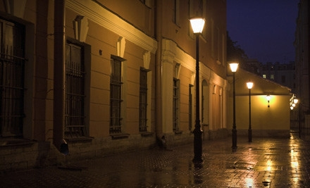 1 Tour Ticket (a $20 value) - Houston Ghost Tour in Spring
