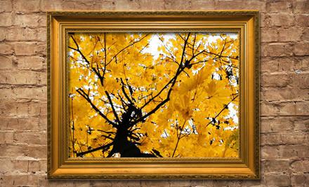 Frame Art - Frame Art in Kendall