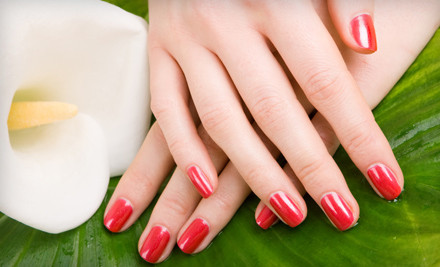 1 Shellac Manicure (a $32 value) - Amore Salon and Spa in Portland