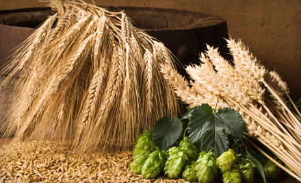 Introductory Wine- or Beer-Making Class for 2 (a $70 value) - Beer & Wine Hobby in Woburn