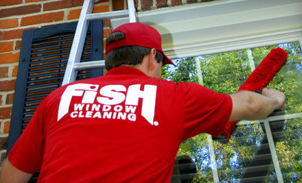 Fish Cleaning   - Fish Window Cleaning in