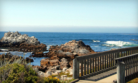 2-Night Stay in a King or 2-Queen Room and Two 2-Day Passes to the Monterey Bay Aquarium - Anton Inn in Pacific Grove