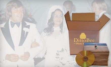 Digitization of Up to 500 Photos on DVD or CD (a $99 value) - DittoBee Photo Scanning in