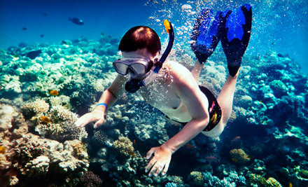 2.5-Hour Youth Snorkeling Cruise for a Child 12 or Younger (a $40 value) - Island Magic Catamaran in Honolulu