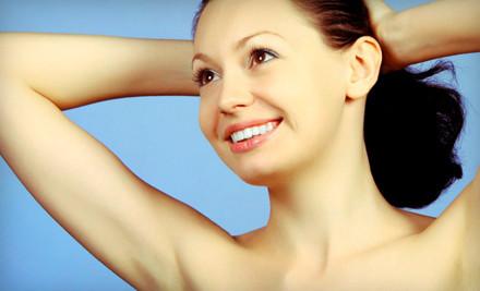 6 Laser Hair-Removal Treatments on 1 Small Area - Carmen Nicole's Wellness Spa in Park Ridge