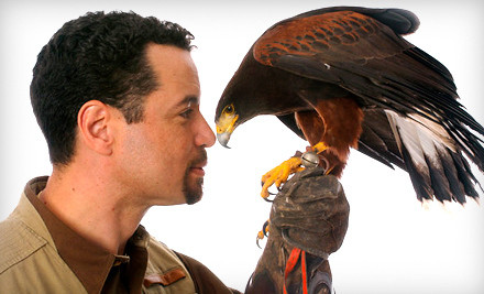 Sat., Mar. 10 at Wild Bird Center of Bethesda: Choice of 10:30AM or 1PM Demonstration (an $80 value) - Mike Dupuy Falconry in Gaithersburg