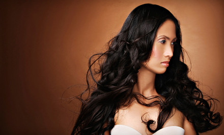 Conditioning Haircare Package Including: Conditioning Treatment, Haircut, Style and Blow-Dry  - Nancy Forbes at Attitude Hair Designs in Elk Grove
