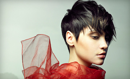 Director-Level Haircut, Blow-Dry and Style, and Deep-Conditioning Treatment (an $88 value) - Lake Alitha Hair & Spa Studio in New York