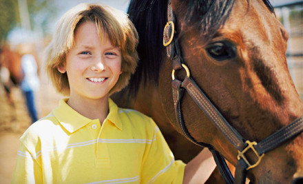 One 30-Minute Horseback Riding Lesson (a $35 value) - Woodwind Farm in McHenry