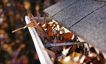 Gutter Cleaning (a $175 Value) - TruGuard Construction Group in