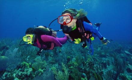 Adventure Diving - Adventure Diving in Crystal River