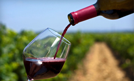 Private Wine Tasting and Tour for up to Six People (a $75 value) - Sleepy Creek Vineyards in Fairmount