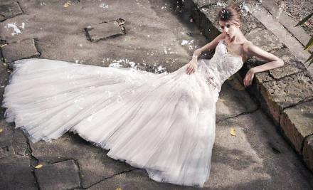 $1,000 Toward a Designer Bridal Gown - TBS Bridal in Oakbrook