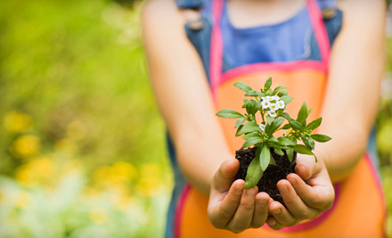 $40 Groupon to Lockwood Farms - Lockwood Farms and Her Secret Gardens in Stanhope