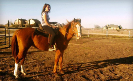 One 60-Minute Private Horseback-Riding Lesson or Trail Ride (a $75 value) - Chisholm Trail Rides in Rockwall