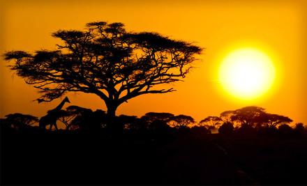 Nine-Day Kenyan Safari Honeymoon for Two, Valid June 130, 2012 - Nine-Day Safari in