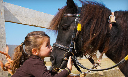 2 Children and 2 Adult Day Passes ($40 value) - Lemos Farm in Half Moon Bay