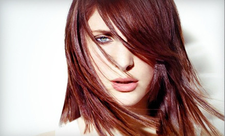 Cut-and-Color Package  - Leading Edge Aveda Salon in Santa Rosa