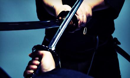 3 Ninja-Sword Classes (a $75 value) - Bujinkan New York Dojo in Yonkers