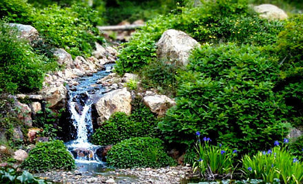 Quarryhill Botanical Garden - Quarryhill Botanical Garden in Glen Ellen