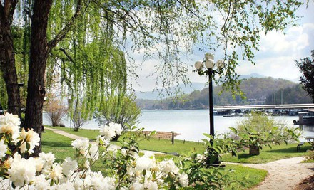 Option 1: One-Night Stay - The Ridges Resort & Marina in Young Harris