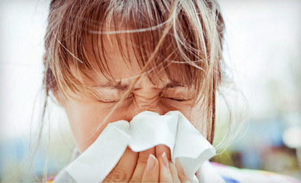 Allergy-Relief Package with 1 Visit and Test and 1 Laser Treatment (a $170 value) - PA Allergy Relief Laser Center in Jeffersonville