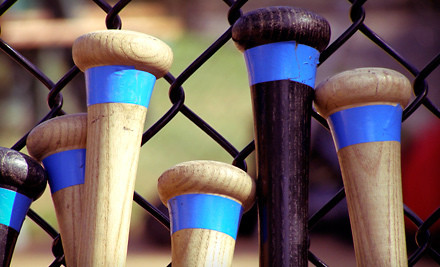 30-Minute Batting-Cage Session (a $30 value) - Bash Sports Academy in Chicago