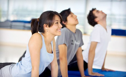 10 Fitness Classes (a $130 value) - Floga Fitness Classes in Waltham
