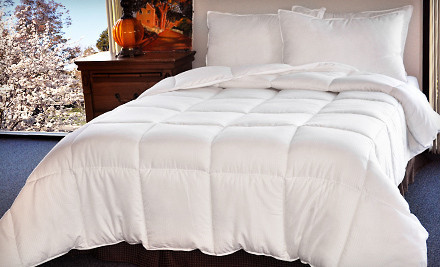 Down-Alternative Comforter: Twin (a $100 value) - Microfiber-Embossed Comforter in