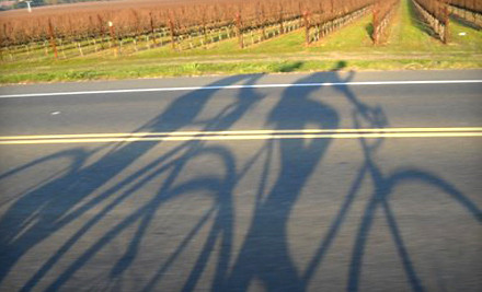 All-day bike rental for two with maps, bike gear, and discounts on wine-tastings - Wine Country Cyclery in Sonoma