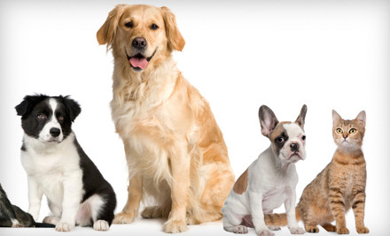 Groupon: $15 for $30 Worth of Pet Supplies, Care Products, Food, and Treats at EntirelyPets.com