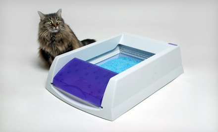 Groupon: ScoopFree Original or Ultra Self-Cleaning Litter Box (Up to Half Off)